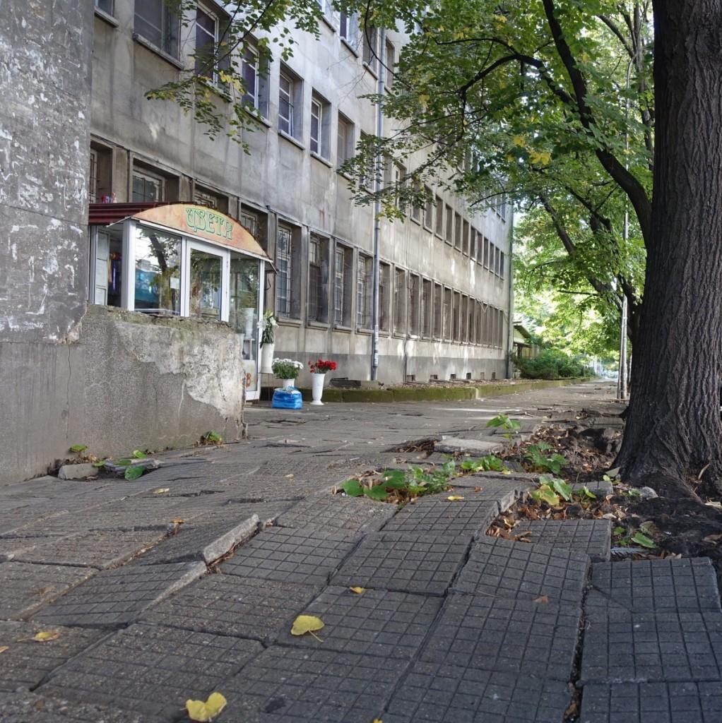 Fortovet er ujævnt, husene grå, men træerne giver Ruse et venligt præg