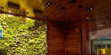 DFW Centurion Lounge