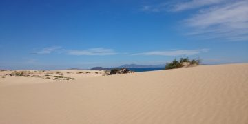 https://pixabay.com/da/klitter-sand-corralejo-oliven-2171299/